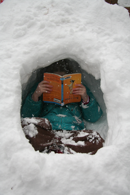 Child reading in snow